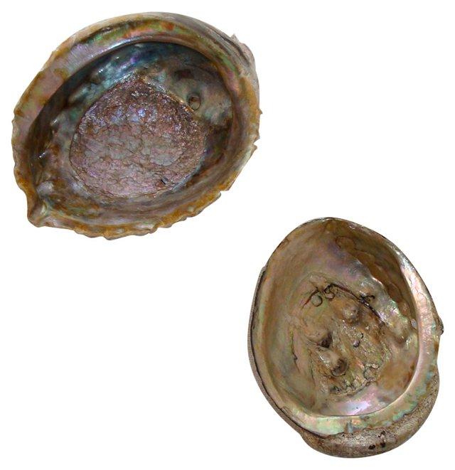 Abalone Shells,   Pair