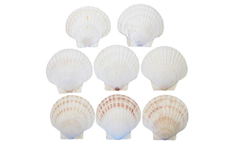 Natural Shell Serving Pieces, S/8
