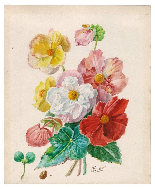 Watercolor of Begonias, C. 1900