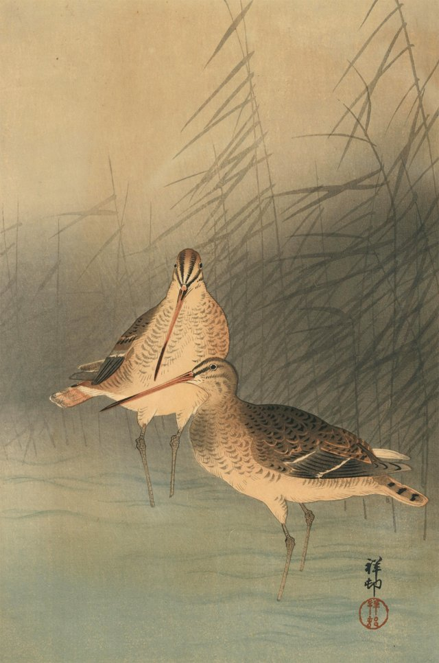 Japanese Woodcut of Shore Birds, 1926