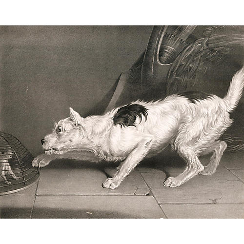 Terrier Lithograph by James Ward, R.A.