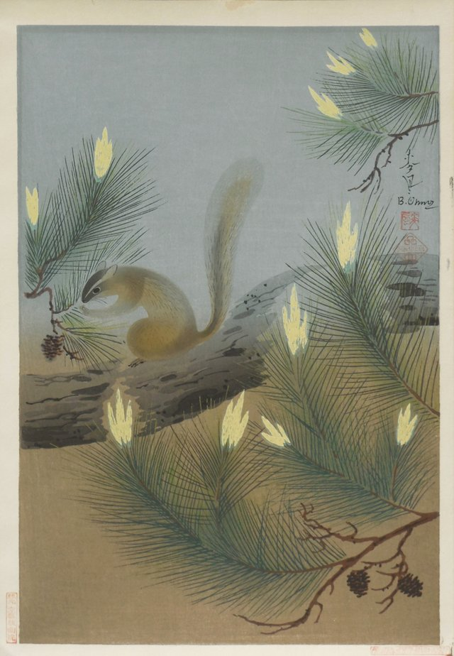 Squirrel in Spring, 1951