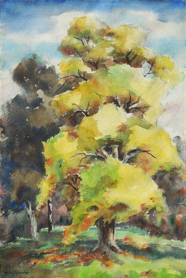 Elm Trees in Autumn, 1965