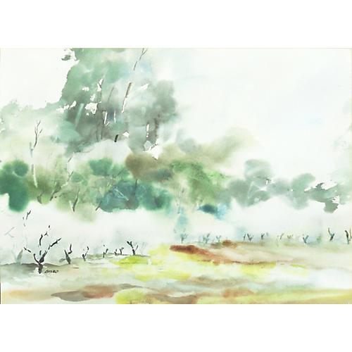 1970s Misty Landscape