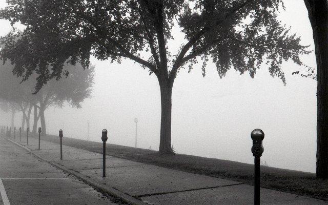 Morning Fog, 1974