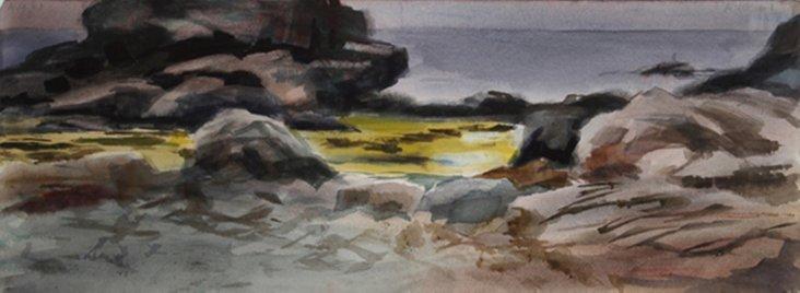 Tidal Pool by Eve Nethercott