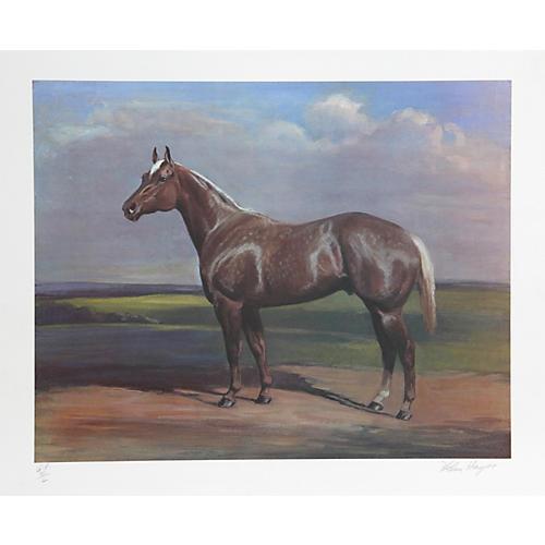 Quarterhorse by Helen Hayse