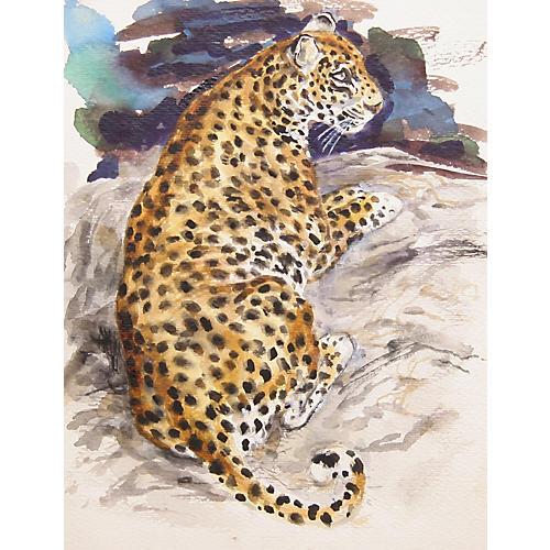 Leopard by Marshall Goodman