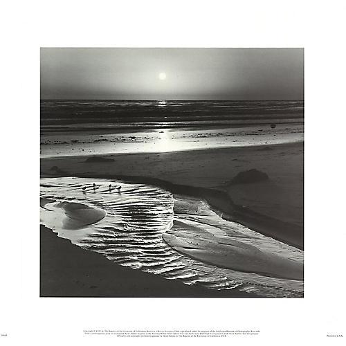 Birds on A Beach, Evening by Ansel Adams