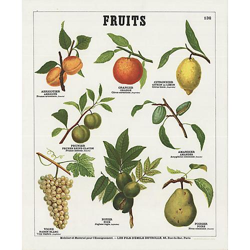 Fruits II by Emile Deyrolle