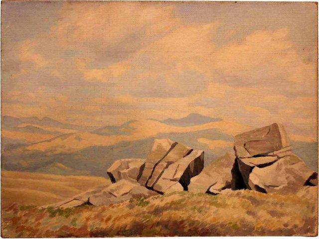 Rocks on Hillside
