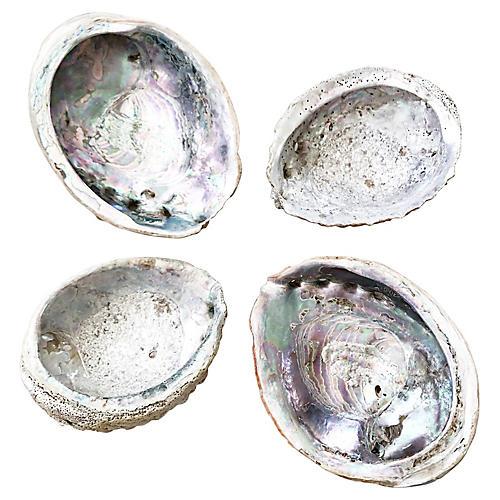 Natural Abalone Shells, S/4