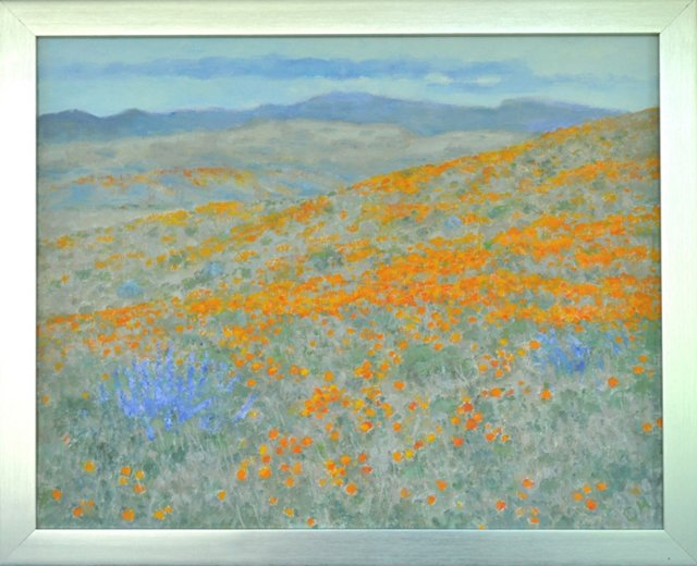 Lupines & Poppies
