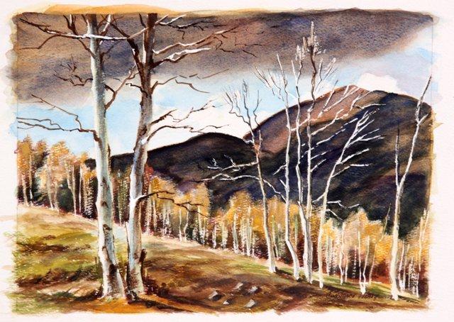 Mountain Storm, 1979