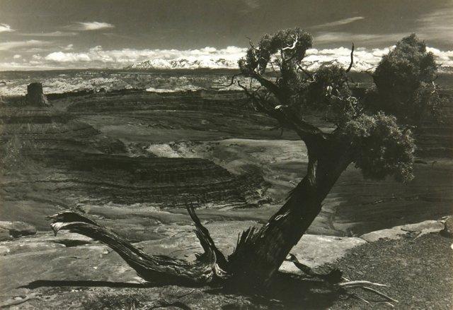 Desert Southwest, C. 1960