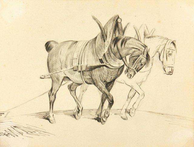 Draft Horses, C. 1910