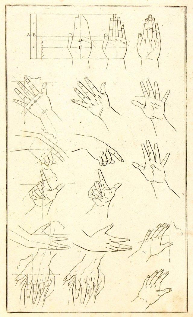 **ReOKL- Study of Hands, 1781