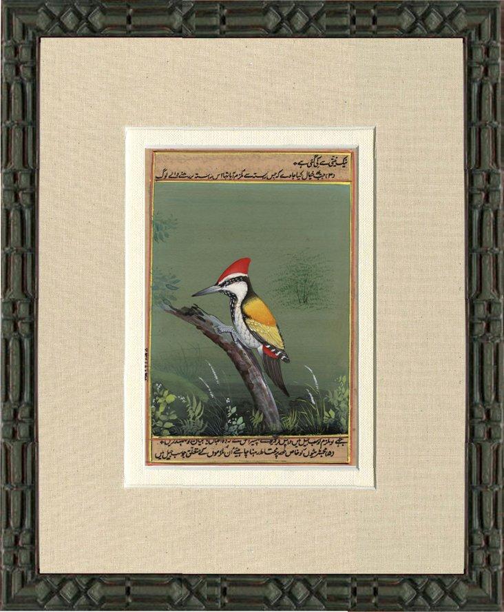 1970s Bird  Print