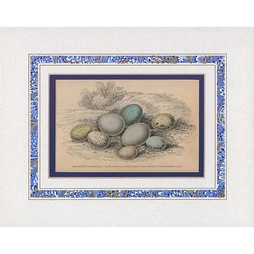 Eggs Print, 1835
