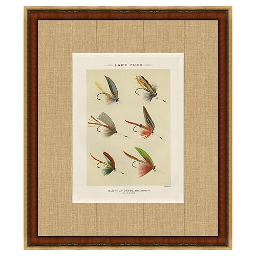 1890s Orvis Lake Flies Print