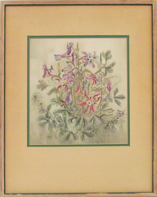 1930s Botanical Study