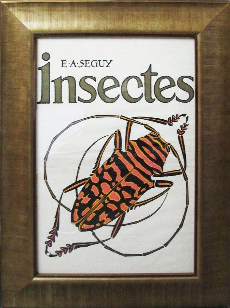 1920s Parisian Insects Design Pochoir