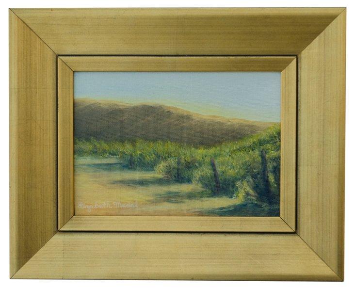 Santa Ynez Vineyard Hillside