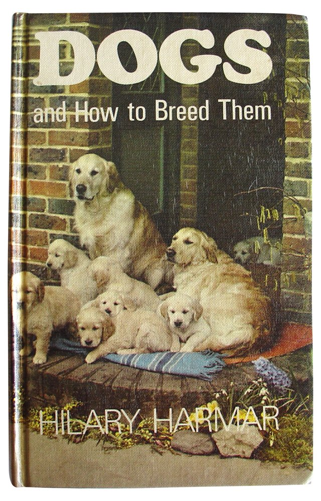 Dogs and How to Breed Them
