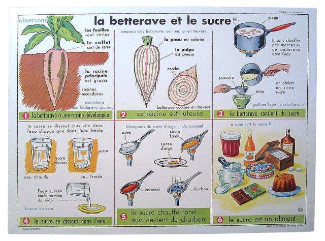 French Sugar & Walnut Poster