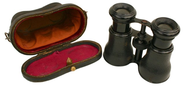 French Binoculars in Leather Case