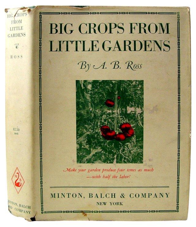Big Crops From Little Gardens, 1925