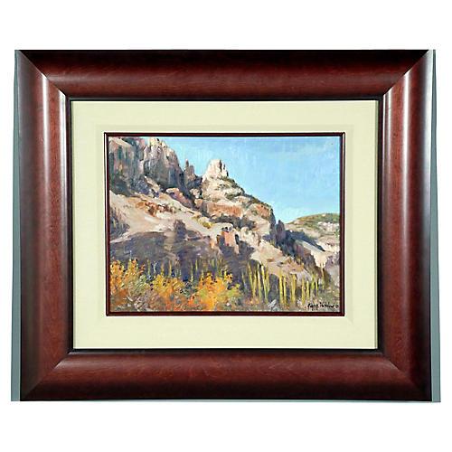 Finger Rock Canyon Arizona Landscape