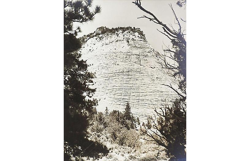 1950's Photograph Candy Mountain