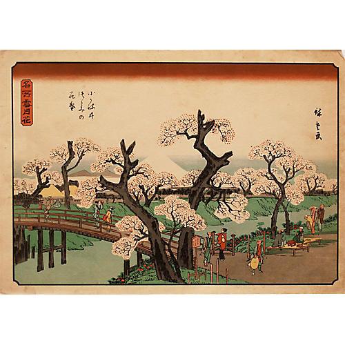 Cherry Trees in Bloom, Utagawa Hiroshige