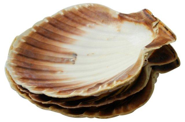 Shell Bowls, S/3