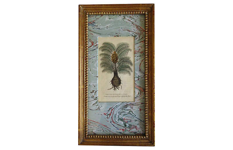19th Century Fern Pine Engraving