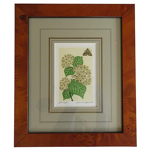 Framed Hydrangea Print