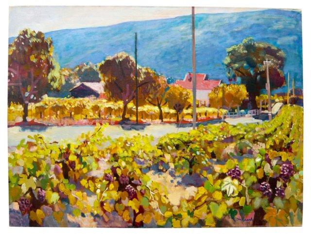 Vineyard in Napa