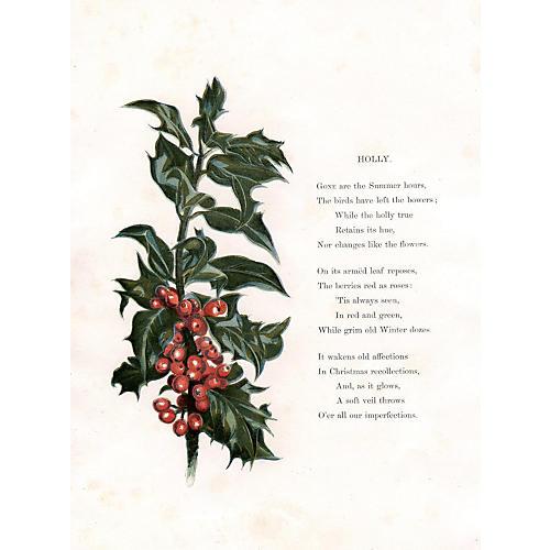 Holly Print, 1873