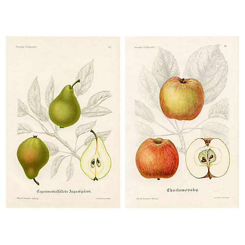 Swedish Apple and Pear Prints, Pair