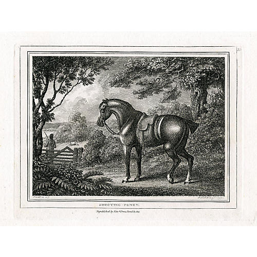 Shooting Pony, 1812 Engraving