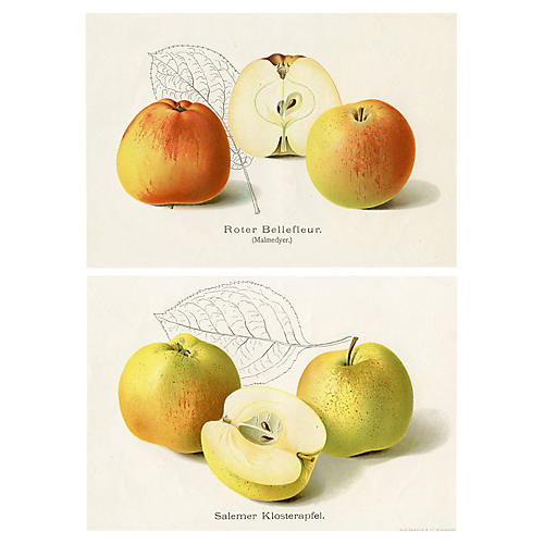 Apple Prints, Pair
