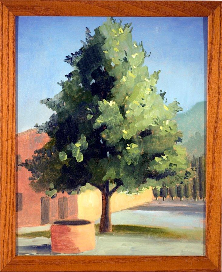 Abbey Courtyard Tree