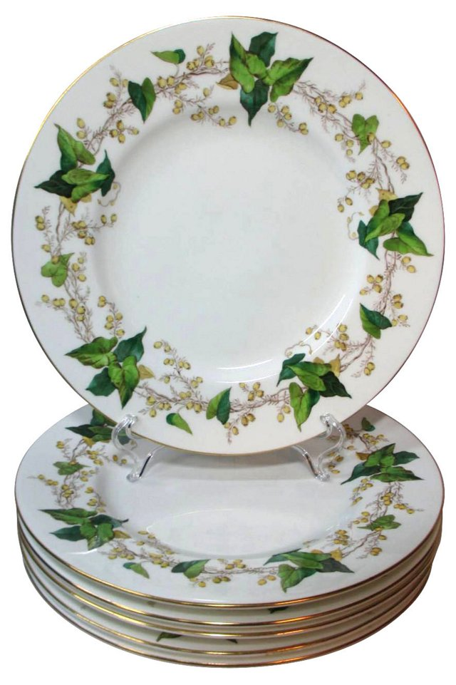 Minton Spring Ivy Dinner Plates, S/6