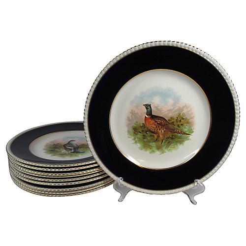 English Gamebird Dinner Plates, S/10