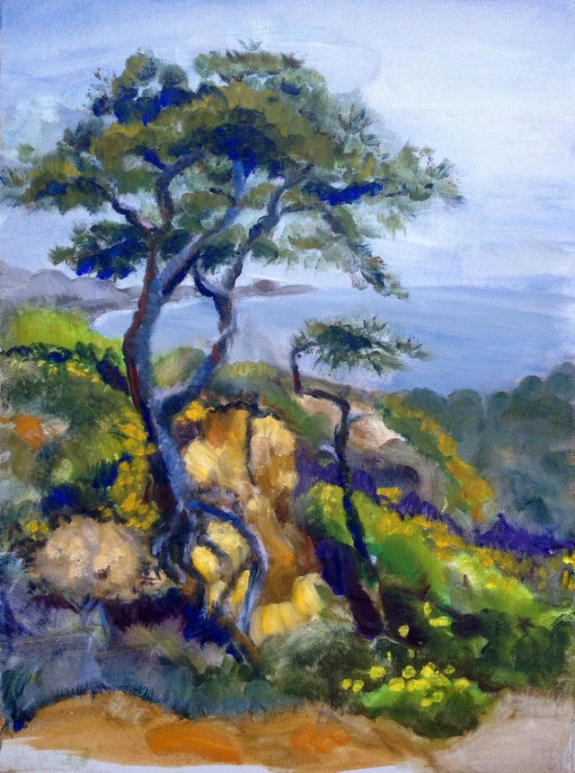 Cypress Tree by the Sea